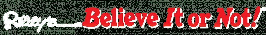 ripleysbelieveitornot-wizardquest