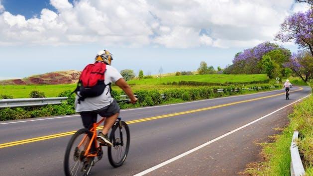 Beautiful purple jacaranda trees flowering along the roads of Maui