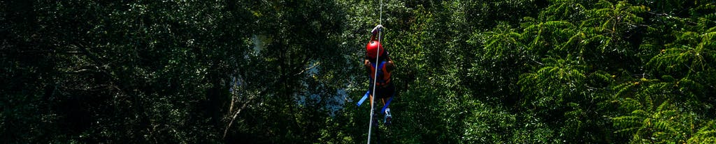 Woman ziplining in a tree canopy at Canaan Zipline Canopy Tours in Rock Hill, SC near Charlotte, NC