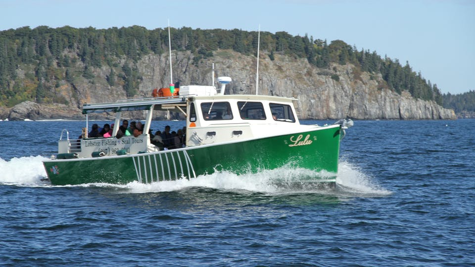 Maine lobster fishing and seal watching tours on the lulu for Lobster fishing in maine
