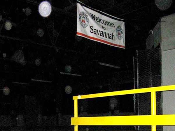 Savannah paranormal orbs