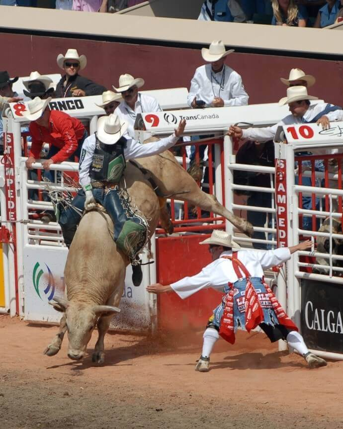 Bull riding comes with a very high risk of injury.