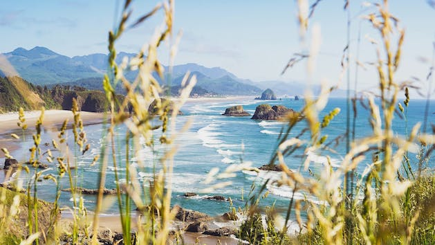 Cannon Beach from a grassy viewpoint during Oregon Coast Tour