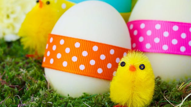 Easter eggs with ribbons with polka dots on the them and little fuzzy decoration chicks on moss