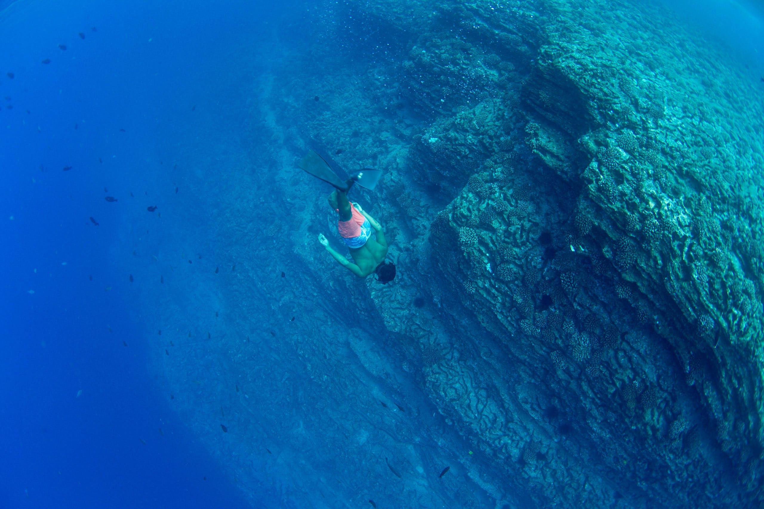 Niihau snorkeling