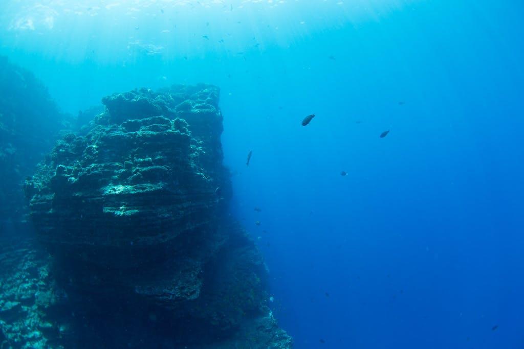 Snorkeling off NIihau