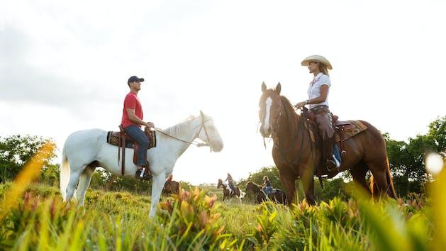 Private-Horseback-Rides-in-Kauai