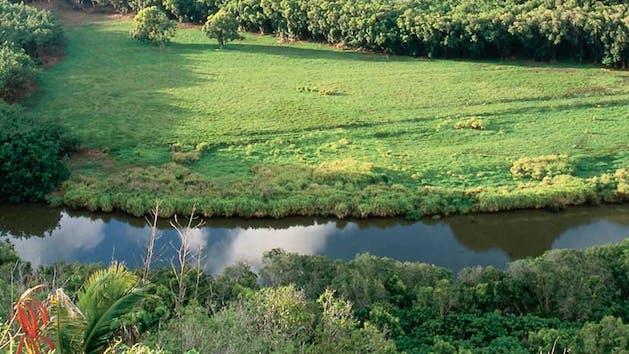 Wailua-River-Kauai