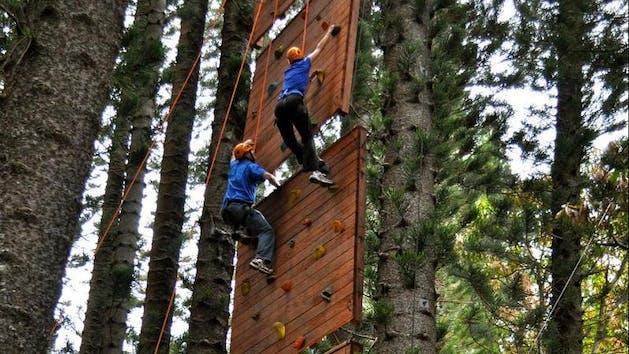 Rock-Wall-Climbing-in-Kauai-Forest
