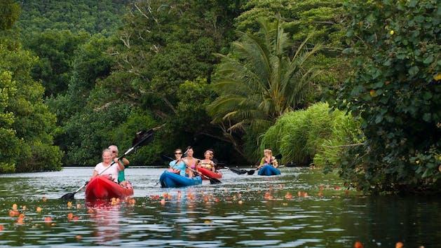 Outfitters Kauai Kipu Zipline Safari | Hawaii Adventure Center