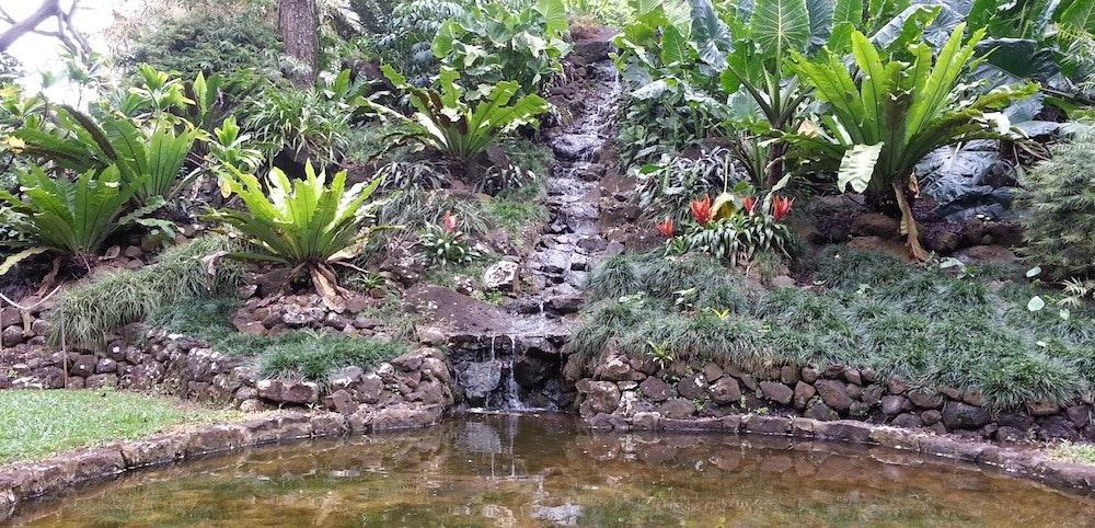 Kauai Botanical Gardens Waterfall ...