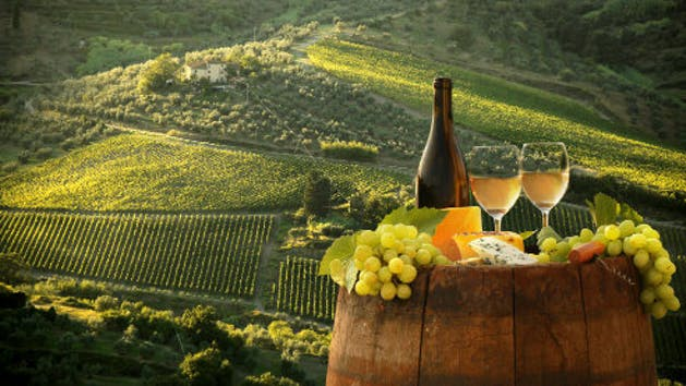 Verde Valley Vineyard with wine and cheese
