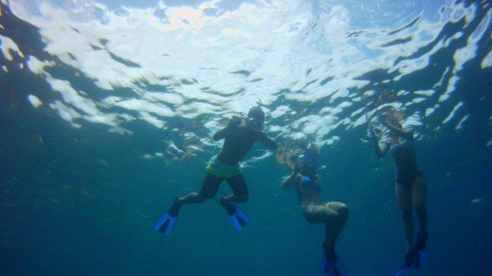 My Kona Adventures - Snorkeling fun for anyone!