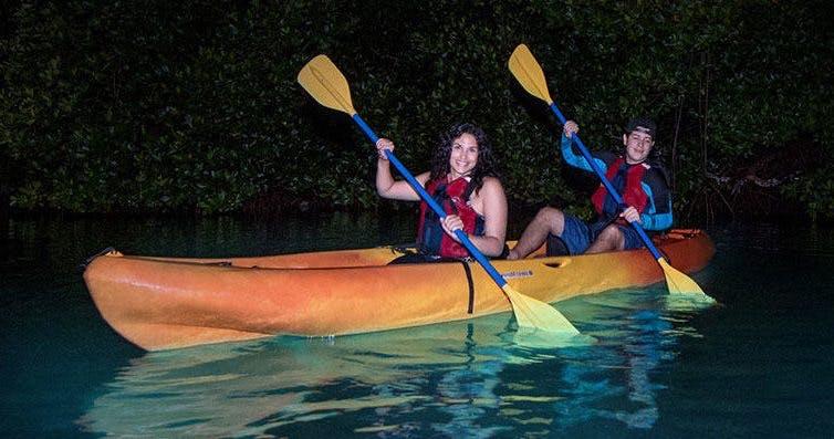 Bio Bay Bioluminescent Kayaking Tour Image 1