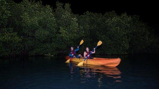 Bioluminescent Kayaking Tour