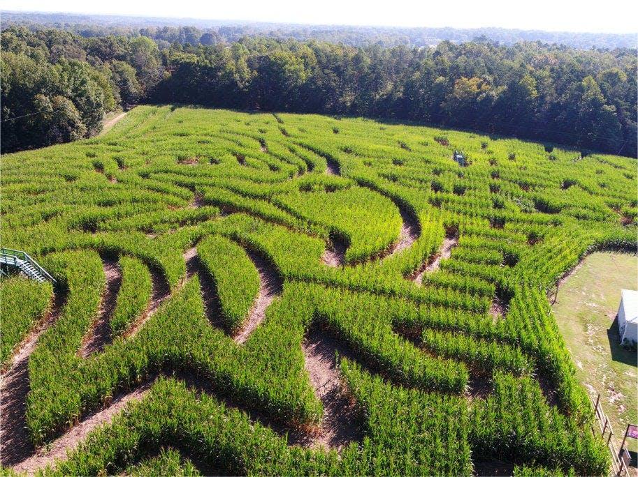 Kersey Valley Maize Adventure | North Carolina's Most ...