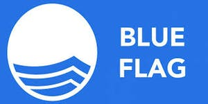 Blue Flag icon