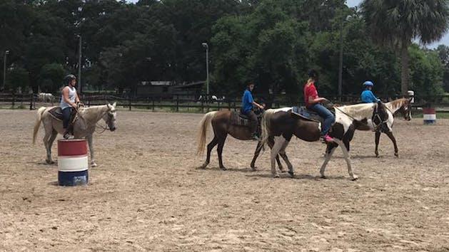 Horseback Lessons