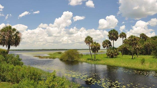 Myakka Florida