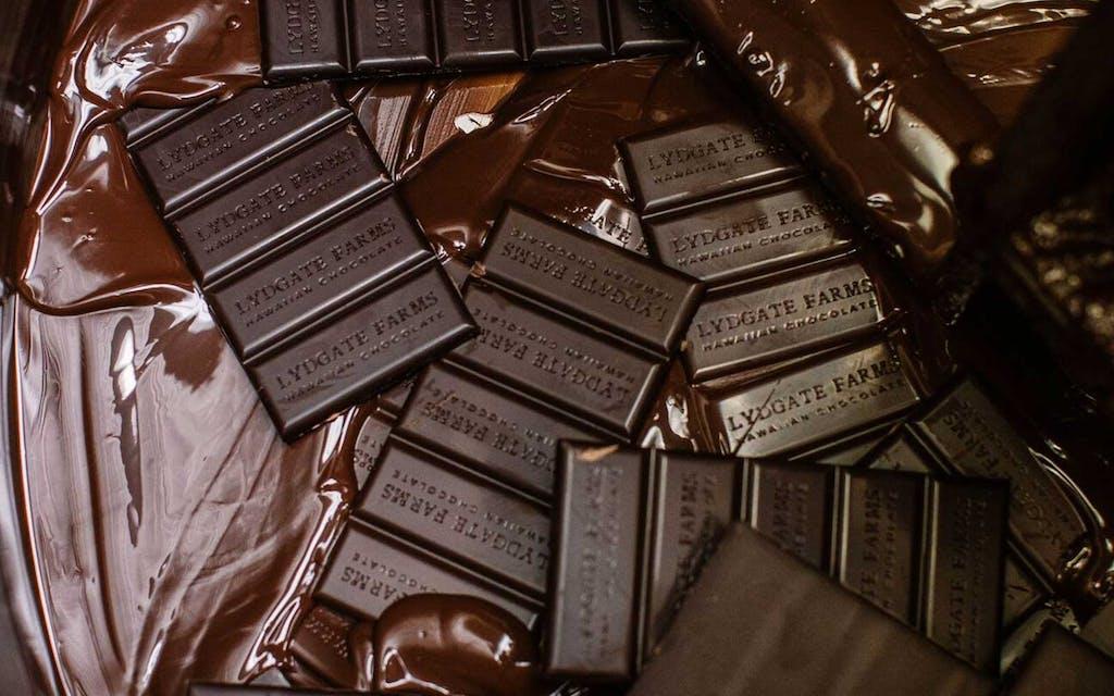 Lydgate chocolate bars melting