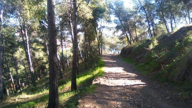 Malaga Natural Park 15km