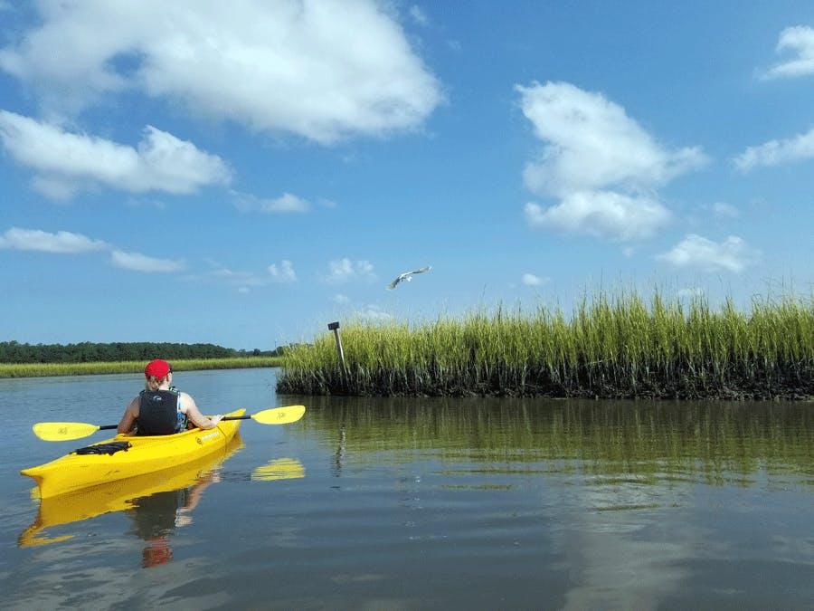 Kayaking in the Salt Marsh
