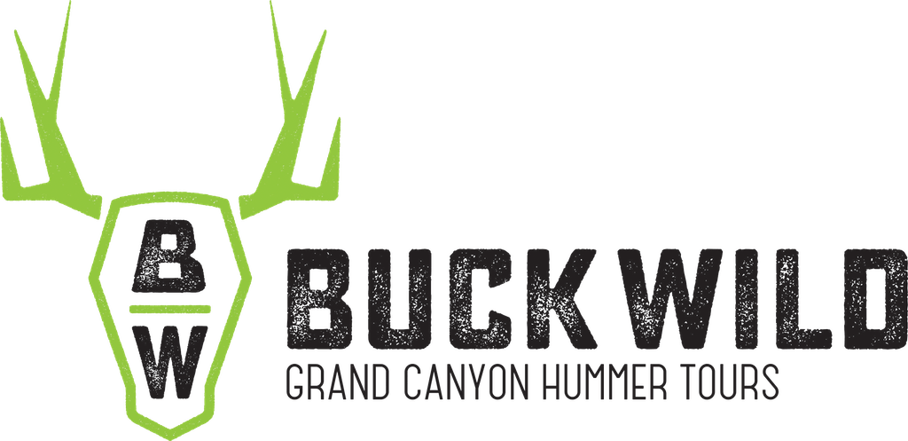 Buck Wild Hummer Tours | Grand Canyon Adventure Tours