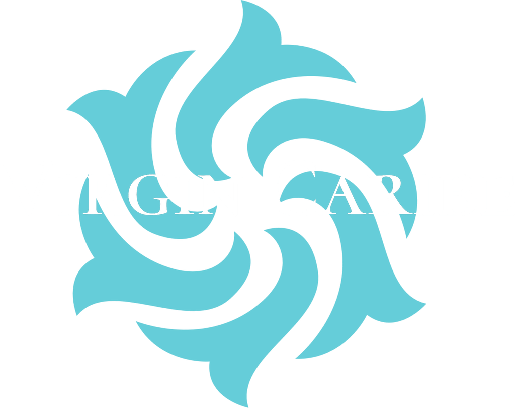 Virgin Caribe logo (white)