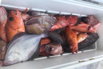 box of fish