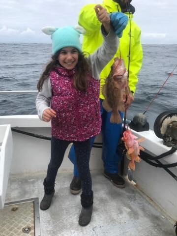 Liana with 2 rockfish
