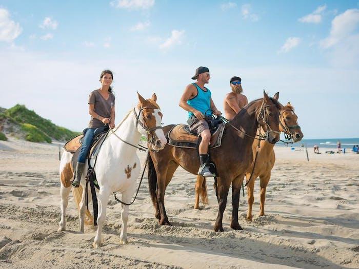 Virginia Beach Guided Horseback Ride