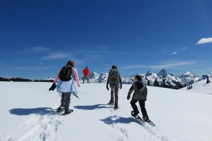 Winter Mt Rainier Tour