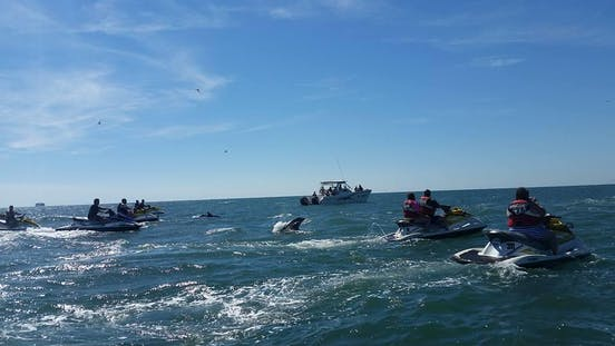 Myrtle Beach Watersports | Boat Cruises & Rentals in SC