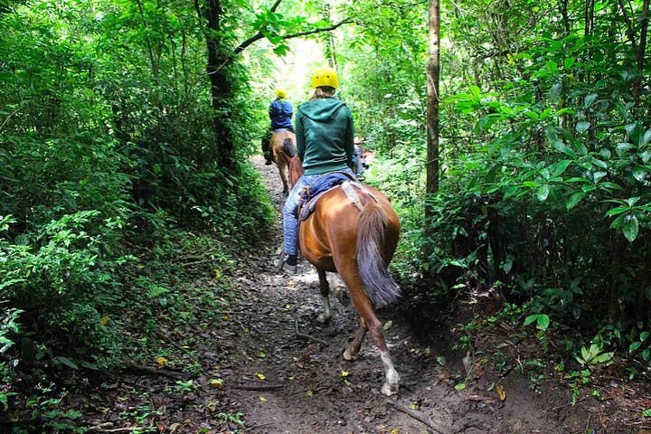 Horseback Riders