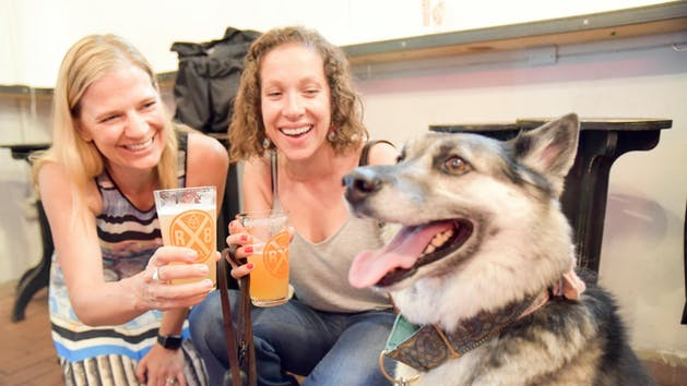 Dog Friendly NYC Brewery Tour