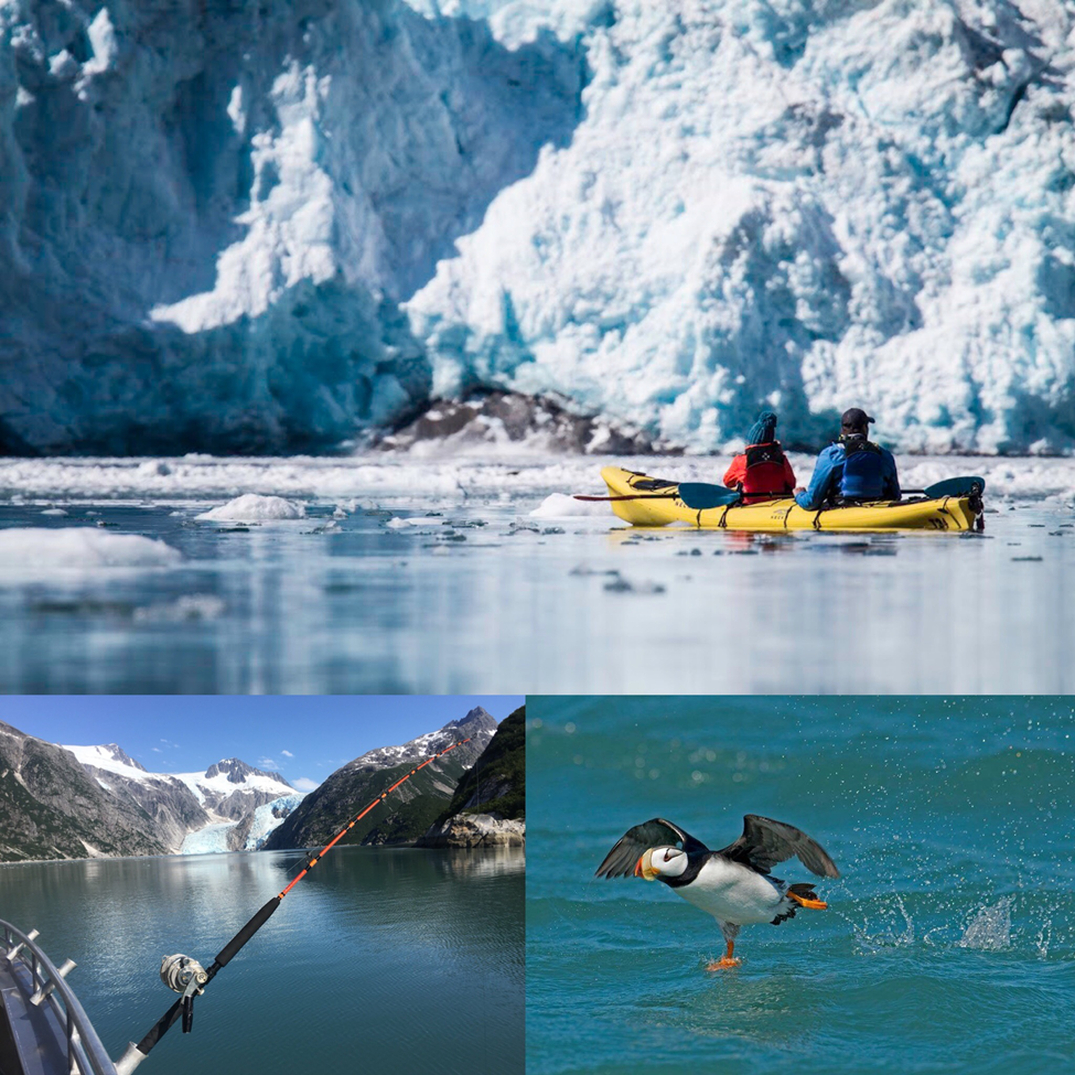 Fish, Kayak, and Sight See Glaciers - Best of Alaska Tour at Miller's Landing
