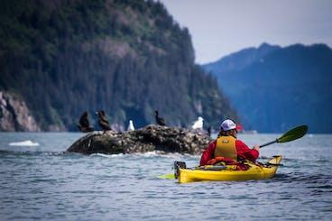 Kayaking in Seward, Alaska | Miller's Landing
