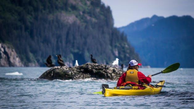 Miller's landing Kayaking