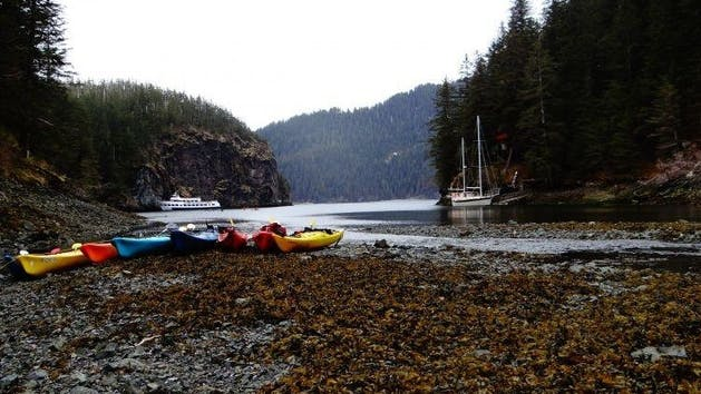 Humpy cove near Seward Alaska with kayaks on the beach