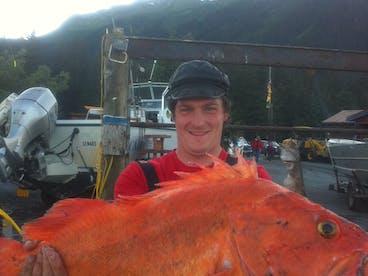 Rockfish in Seward Alaska