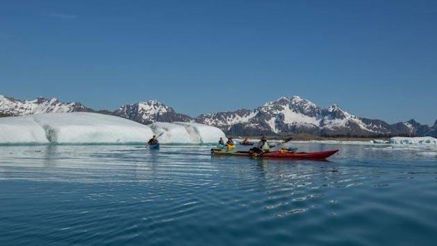 Captain's Choice Kenai Fjords National Park Kayaking
