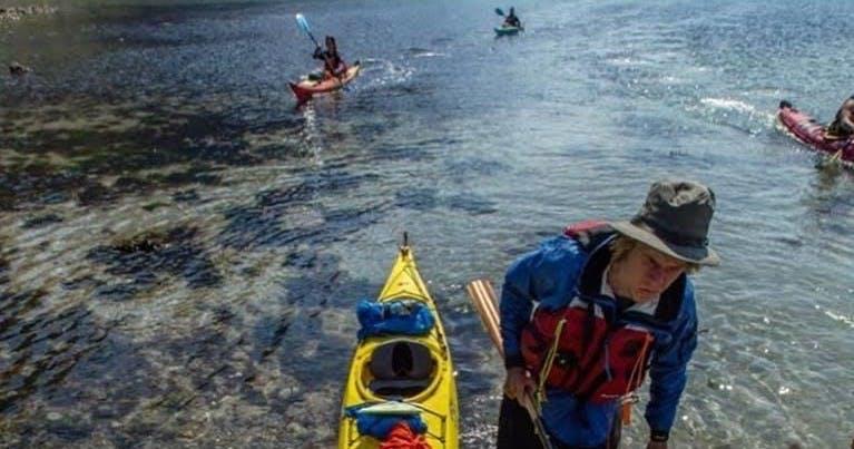 Kayak Rentals In Seward Alaska Miller S Landing