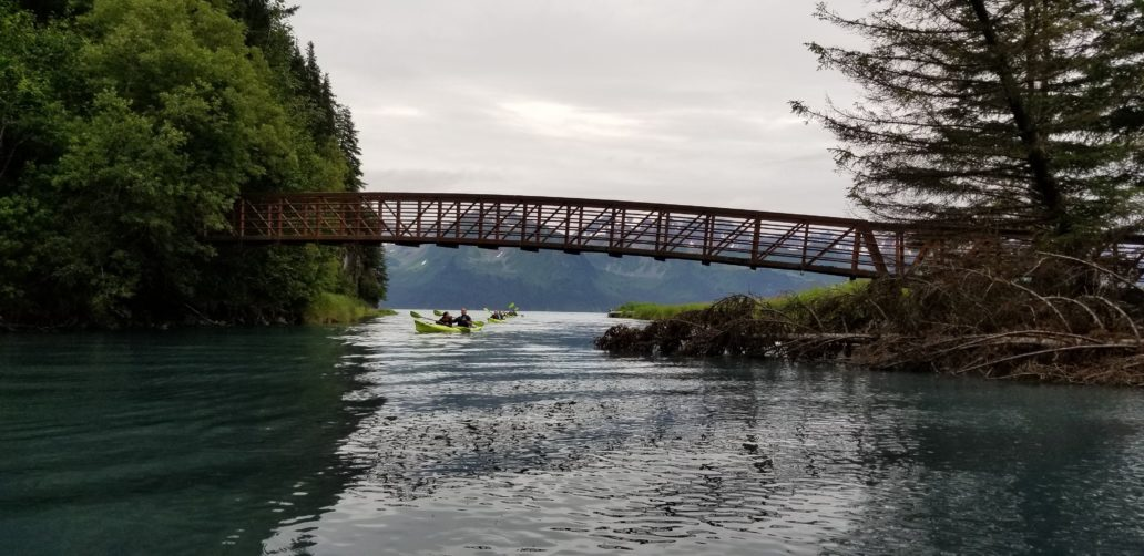Guided Kayaking Trip under Tonsina Bridge