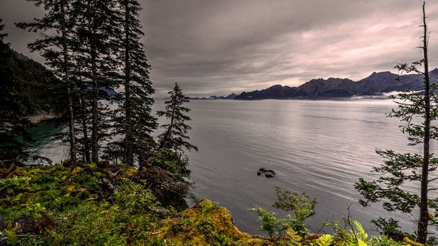 Granite Point Lodge in Seward