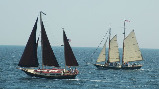 Pineapple Ketch and Woody ships