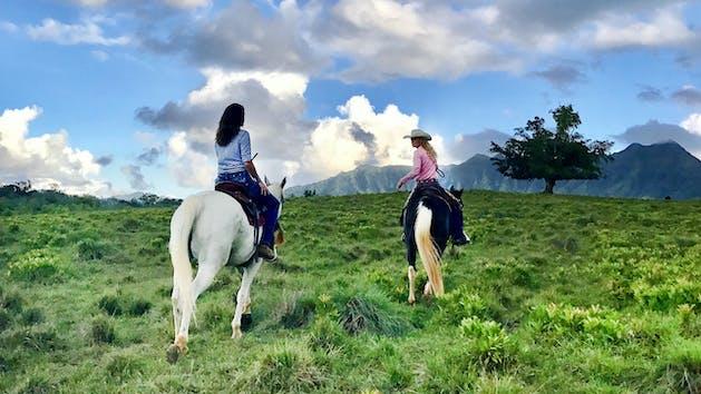 closeup of 2 people riding horses in Kauai