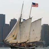 Meet the Liberty Fleet