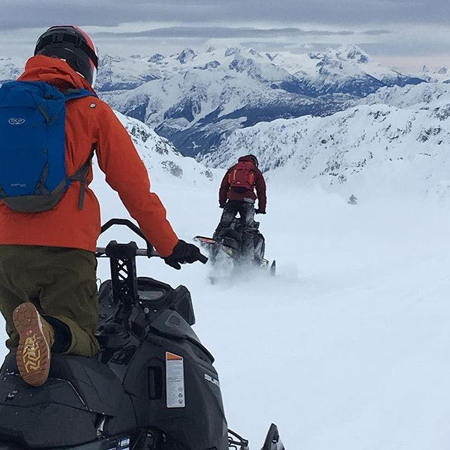 A view from a sled in Pemberton