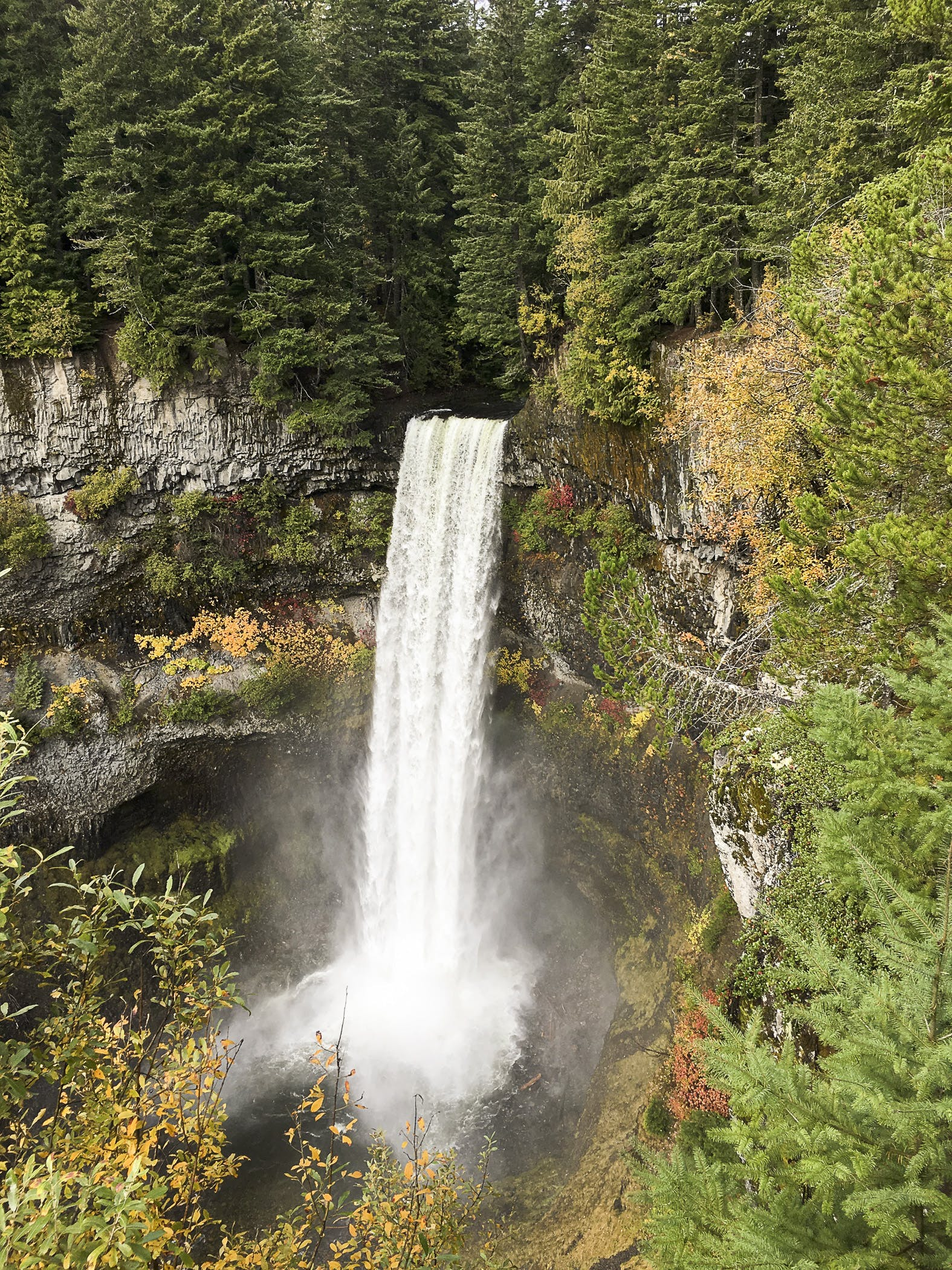 Brandywine Falls Before Whistler