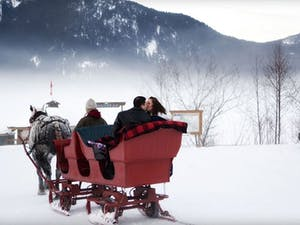 Wedding with Blackcomb Sleigh Rides